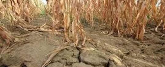 Obavijest o proglašenju elementarne nepogode – suša