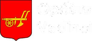 Općina Vođinci